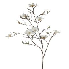 https://www.onlinekunstplanten.nl/media/catalog/category/Magnolia_tak_240_x_240_.jpg