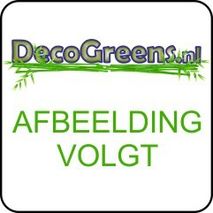 Deco Greens Poly rond laag ribbel Antraciet D34 H33